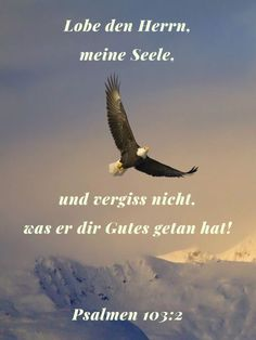 Lobe Den Herrn, Love Yourself First, German Language, Holy Spirit, Bald Eagle, Believe, Movie Posters, Movies, Pick Yourself Up