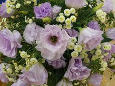 Lisianthus. Meaning is unchanging love. Where is my unchanging love? #flower #lisianthus #beautiful