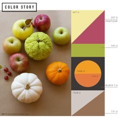 For many, Autumn is the best season of the year. For me, it's definitely one of my favorite times of the year to create color palettes inspired by nature. Brilliant hues and subtle shades surround us: Straw yellow, glorious orange, ripe crimson and warm, friendly green. We know it's still October, but this seasonal color story […]