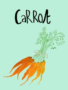 Carrot - Claudia Pearson