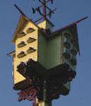 Purple Martins R Us website. Everything you wanted to know about purple martins and more.
