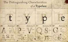 anatomia-de-una-tipografia