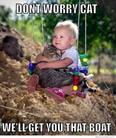 Dont Worry Cat  -  We'll get you that boat... ☆•*´`°•.☼☆•ツ☆•*´`°•.☼☆•ツ☆•*´`°☽•.☼☆•ツ