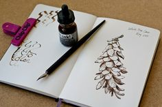 One of the most beautiful tools for drawing is the classic dip pen. Paired  with a bottle of ink, the humble pen can be used to create highly  expressive drawings. The pen itself can be fashioned from sharpened reeds,  feather quills or more commonly, metal nibs attached to wooden handles. I  use an extra fine # 513 Hunt Globe Bowl pointed nib. It's made of hardened  steel,but has enough flex so I can vary the line thickness.  If you've never tried using a dip pen before, or if like me…
