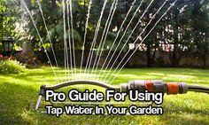 Pro Guide For Using Tap Water In Your Garden