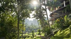 View photos and videos of Four Seasons Resort Bali at Sayan, a luxury five-star resort just minutes from Ubud.