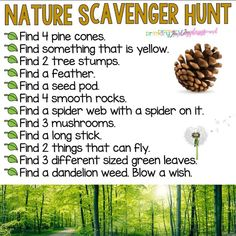 You searched for Nature scavenger hunt - Primary Playground Nature Scavenger Hunts, Scavenger Hunt For Kids, Dandelion Weed, Rainbow In A Jar, Smooth Rock, Natural Playground, Playground Ideas, Home Activities, Outdoor Activities