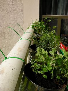 DIY Balcony Railing Planter: Decorative Planter Ideas - Unique Balcony & Garden Decoration and Easy DIY Ideas Balcony Railing Planters, Balcony Garden, Balcony Decoration, Decorative Planters, Diy Planters, Planter Ideas, Metal Hangers, Edible Plants, Terracotta Pots
