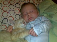 Here is a baby holding hands with a kitty. You're welcome.