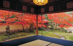 Shimane: Adachi Museum of art, garden 島根: 足立美術館