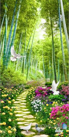 Image of Flowers Birds Lane Forest Tree Corridor Entrance Wall Mural Decals Art Print Wallpaper 075 Beautiful Landscape Wallpaper, Beautiful Flowers Wallpapers, Beautiful Landscapes, Beautiful Landscape Photography, Photography Studio Background, Studio Background Images, Nature Photography, Beautiful Flowers Garden, Beautiful Gardens