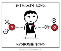 The name's Bond...Hydrogen Bond    i must be a geek cuz this made me LOL