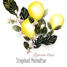 Иллюстрация с лимоном реалистичные вектор на цветущие ветви — стоковая…
