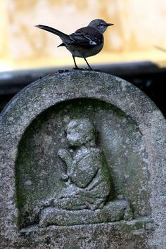 An old headstone
