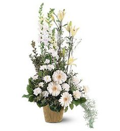 TF194-2 White Impressions, elegant and striking all white flower arrangement created with white gerberas, white flats and snapdragons. - Timmins Flower Shop