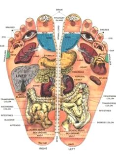 Shiatsu Massage – A Worldwide Popular Acupressure Treatment - Acupuncture Hut Reflexology Massage, Foot Massage, Foot Reflexology Chart, Massage Body, Neck Massage, Facial Massage, Health And Beauty, Health And Wellness, Health Fitness