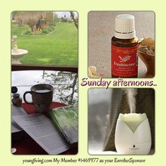 Let me know when you are ready to try essential oils for your health and wellness.. #youngliving #essentialoils #natural #health #wellness #lavenderladies #triharmonyoilers #lavender #frankincense #sunday #meditation #prayer