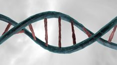 Cinema 4d Tutorial - How to Make a  DNA Double Helix in Cinema 4D