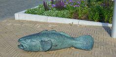 """Een benebreker nabij de viskot. De vis is onderdeel van een groter kunstwerk bestaande uit fontijn en meerdere vissen op het droge. Jammer dat niet over alle kunst in Kattuk betreft de plaatsing even goed wordt nagedacht. Al blijft het idee van de ontwerpers aardig. Een waterkunstwerk waarbij de bronzen vissen als het ware naar de zee """"zwemmen"""". De neuzen zijn allen gericht richting zee."""