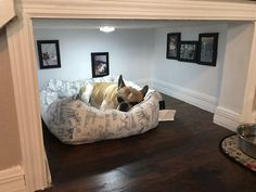 Man Builds Entire Bedroom Under Stairs For His Dog - http://viralbubble.com/man-builds-entire-bedroom-under-stairs-for-his-dog/