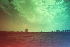 Pretty in Mad | film adventures: Orizzonti Campestri con Revolog Kolor #revolog #kolor #35mm #analog #colors #film #believeinfilm #prettyinmad