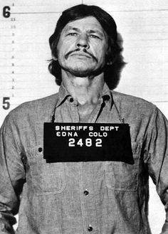 1974 : Mister Majestyk - Richard Fleischer With Charles Bronson as Vince Majestyk Hollywood Actor, Hollywood Stars, Classic Hollywood, Old Hollywood, Celebrity Mugshots, Boys Long Hairstyles, Steve Perry, Thing 1, Steve Mcqueen