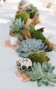 driftwood moss and succulent centerpiece at Texas Hill Country Wedding