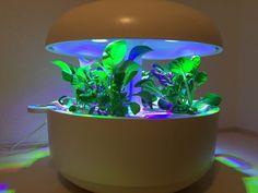 「Plantui(プラントゥイ)」は、日照時間が少ないフィンランドで生まれたインドアハーブガーデンだ。コンピューター制御による光と水のコントロールで、種が入ったカプセルをセットするだけでハーブや葉物野菜、食用花が育てられる。LEDによる水耕栽培器はここ2~3年、いくつか登場してきているが、レッド・ドット・デザインアワードを受賞しており、デザインがとても美しい。