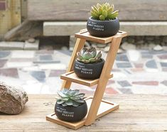 Planter Pot Geometric Flower Pot 3 Bonsai Cactus Planters with Bamboo Shelf 3 Pots 1 Stand 1 Set Cement Succulent Planter Pot Geometric Flower Pot 3 Bonsai Cactus.