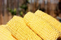 kukurydza-budyń Vegetables, Food, Essen, Vegetable Recipes, Meals, Yemek, Veggies, Eten