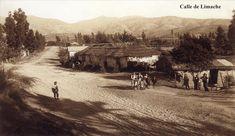 Imágenes de Chile del 1900: Limache y Olmué