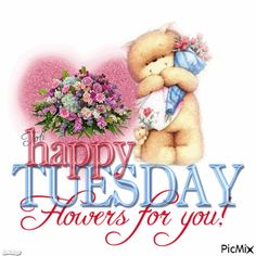 Happy Tuesday, Flowers For You! Good Morning Tuesday Images, Happy Tuesday Pictures, Happy Tuesday Morning, Good Morning Sister, Happy Tuesday Quotes, Tuesday Humor, Good Morning Happy, Good Morning Flowers, Happy Thursday