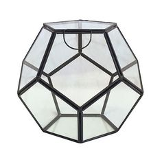 Globe Glass Terrarium Container ($20) ❤ liked on Polyvore featuring home, home decor, clear, glass globe, succulent glass terrarium, glass terrarium, geometric home decor and geometric terrarium