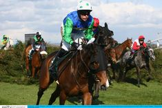 Comply Or Die, ridden by Timmy Murphy, won the 2008 Grand National