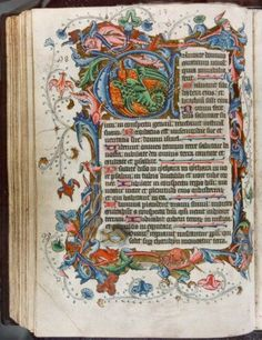 The Codex and Illuminated Manuscript