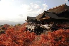 Kiyomizu-dera Temple (清水寺) Kyoto, Japan. One of the most popular pilgrimage sites for worshippers since the Heian period.