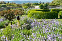 LE PAVILLON DE GALON - Provence Hotel, B&B and Luxury Guest House in Cucuron - Luberon B B - ACTIVITES
