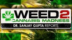 dr gupta weed documentary - YouTube