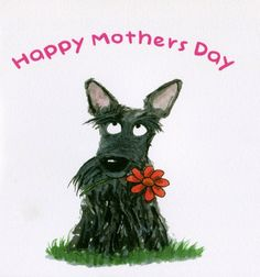 Scottie Dog Happy Mothers Day , Square Greeting Card. Printed on 300gsm smooth matt card. With white envelope. Blank inside for your message.