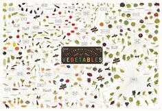 1 | Infographic: Over 400 Vegetables On One Incredibly Healthy Poster | Co.Design: business + innovation + design