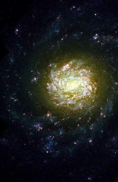 Galaxy NGC 4041.