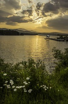 Mooshead lake at Greenville Maine Greenville Maine, Beautiful Places, Beautiful Pictures, Vacation Trips, Places To See, Landscape Photography, Photo Galleries, Coastal, Scenery