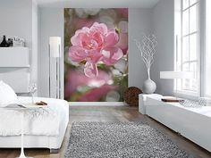 Carta Da Parati Fiori Di Loto : Fantastiche immagini in carta da parati con fiori magnolie su