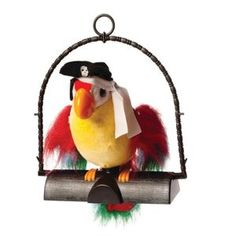 Great prices on your favourite Gardening brands, and free delivery on eligible orders. Pirate Parrot, Talking Parrots, Playroom, Christmas Ornaments, Holiday Decor, Dressage, Outdoors, Amazon, Good Morning