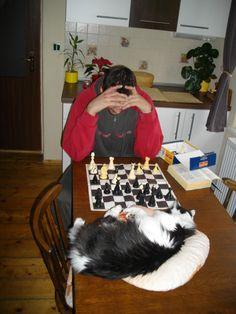 Maxa hraje s Mírou šachy :-D