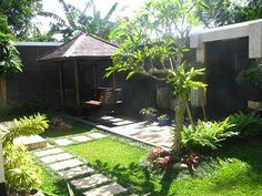 Tropical Garden for Small Backyard | Home Interior & Furniture Design