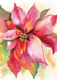 """Christmas Poinsettia Watercolor by Marsha Woods"