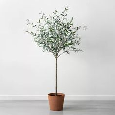72 Faux Olive Branch Tree Hearth & Hand with Magnolia Size: 72 Green Brown Artificial Topiary, Artificial Flowers And Plants, Fake Plants, Indoor Plants, Indoor Trees, Potted Plants, Olive Plant, Faux Olive Tree, Cactus