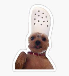 'Croc Dog' Sticker by Bubble Stickers, Meme Stickers, Snapchat Stickers, Cool Stickers, Laptop Stickers, Crocs Funny, Aesthetic Stickers, Sticker Design, Vsco