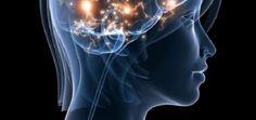 When Barbara Fredrickson, PhD., professor of Psychology and Neuroscience at UNC-Chapel Hill, hears Barbara Fredrickson, Best Fish Oil, Blinde, Omega 3 Fish Oil, Best Brains, Customer Engagement, Medical Research, Living A Healthy Life, Brain Health